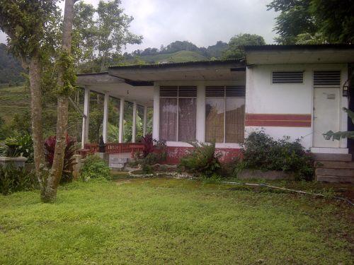 dijual Rumah di Cisarua, Bogor – Dijual Rumah Asri di Cisarua